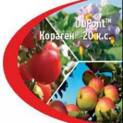 Insecticide Кораген® 20 k.s. Dupont. Means of