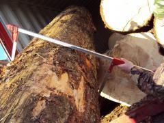 Maple Beech Ash Oak Hard Woods