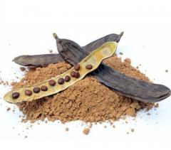 Кэроб (аналог какао порошка)