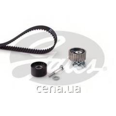 Комплект ГРМ LANCIA MUSA 1.6 Дизель 2008 -  (k015646xs)