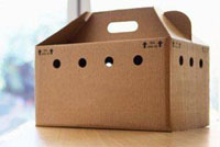 Boxes made of cardboard complex configuration