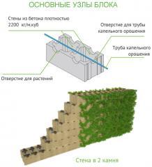 Система бетонных блоков для вертикальных зеленых стен