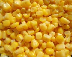 The corn frozen supersweet Ukraine 2, 5kg