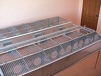 Оборудование для выращивания кроликов,