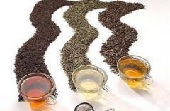 Tea in assortment EXPORT