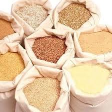 Flour, grain Export EXPORT