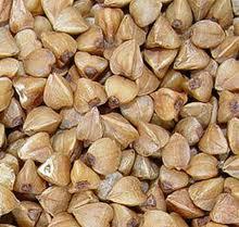 Посевной материал семена гречки собственного