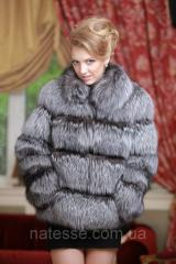 Short fur coat a vest from the silver fox (perforation) of silver fox fur coat and ves
