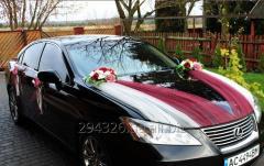 Комплект украшения машины на свадьбу №9