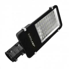 Светодиодный Eurolamp LED Светильник уличный классический SMD 100W 6000K