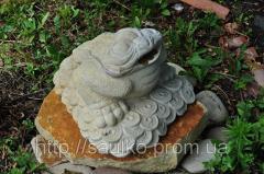 Китайская лягушка