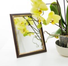 Зеркало в багете, 1913-28 -13*18