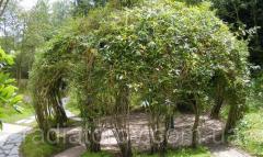 Садовая беседка из композитной арматуры Polyarm