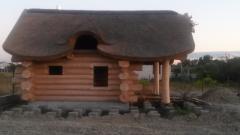 자연 지붕