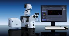 The laser scanning LSM 700 microscopes