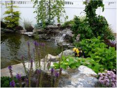 Пруды садовые Украина, проектирование, сервис,