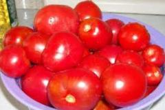The tomatoes frozen
