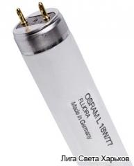 Лампа люминесцентная Osram Fluora Т8 L18W/77...