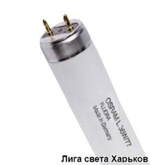 Лампа люминесцентная Osram Fluora Т8 L36W/77 G13