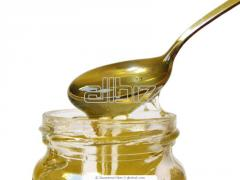 Honey from forbs