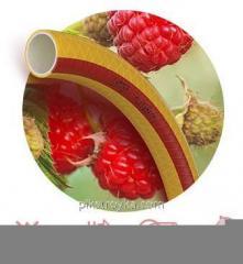 Hadice potravinářské Ø1/2 m ovoce + Berry 3 õ slojnnyj, zesílené Symmer 1/1