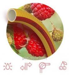 Hadice potravinářské Ø1/2 50 ovoce + Berry 3 õ slojnnyj, zesílené Symmer 1/1
