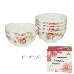 "Nastavit салатников 6pr. 4.5 ""sklo keramika orchidej S & T 1/1"