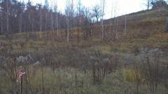 Land pl