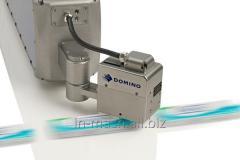 Markiratora laser Domin