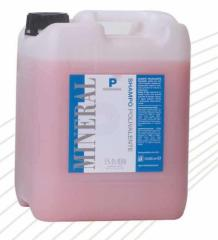 Professional colored hair shampoo, 10 l
