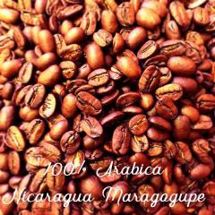 Зерновой кофе Arabica Nicaragua Maragogype 20scr