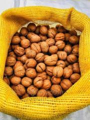 Грецкий орех целый, в скорлупе (калибр 28+)