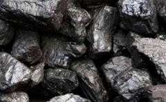 Anthracitic coal