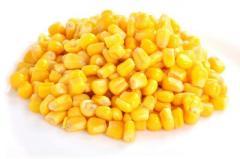 Milho amarelo