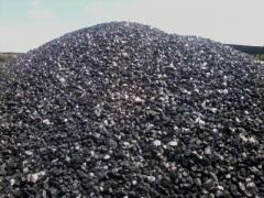 Black coal of Tr, fr 0-100 mm 0-50 mm ash-content