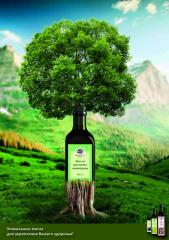Олія натуральна з виноградних кісточок