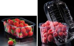 Containers are food. Packaging for strawberry, raspberry, seasonal products, fruit, vegetables, mushrooms