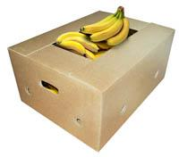 Boxes for meat, poultry, fish, vegetables, fruit, sausages