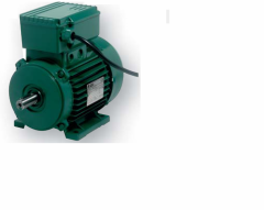 Asynchronous single-phase electric motors