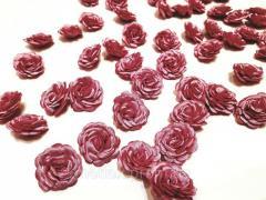 Розы - цвет роза