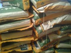 Семена подсолнечника Аурис гранстар