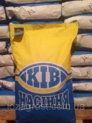 Семена подсолнечника Аракар евро-лайтинг