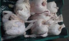 Мясо птицы, тушки и части тушек замороженное