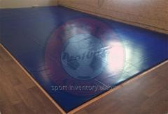 Carpet worstelen training