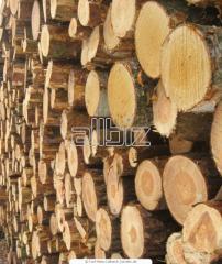 Sawlog coniferous general purpose. GOST 9463-88.