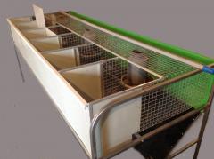 Клетка кролик пристеночная одноярусная маточно-откормочная