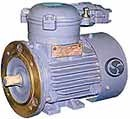 Explosion-proof AIM 63 - 160 electric motors