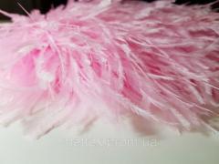 Страусиные перья на ленте - цвет светло-розовый