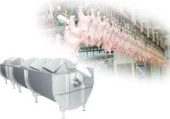 Machinery and equipment for the poultry