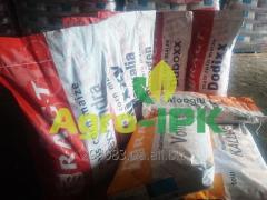 Семена подсолнечника RAGT(РАЖТ) Все гибриды